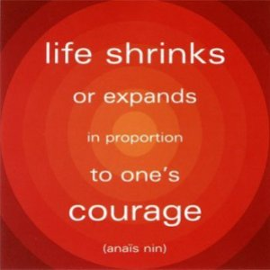 Pic-courage-quote